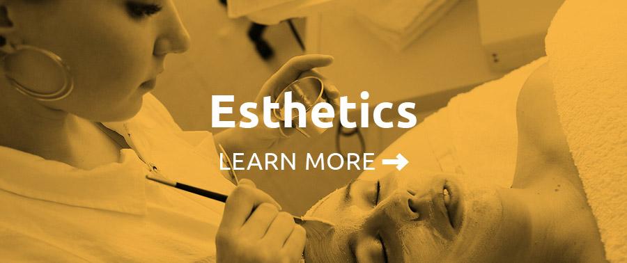 Esthetics Programs